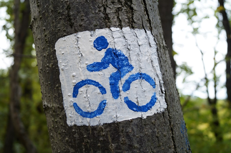 bike-966771_960_720